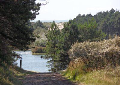 boswachterij-westerschouwen-pad