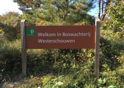 welkom-in-boswachterij-westerschouwen
