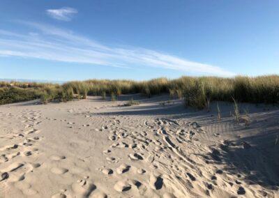 duinen-burgh-haamstede